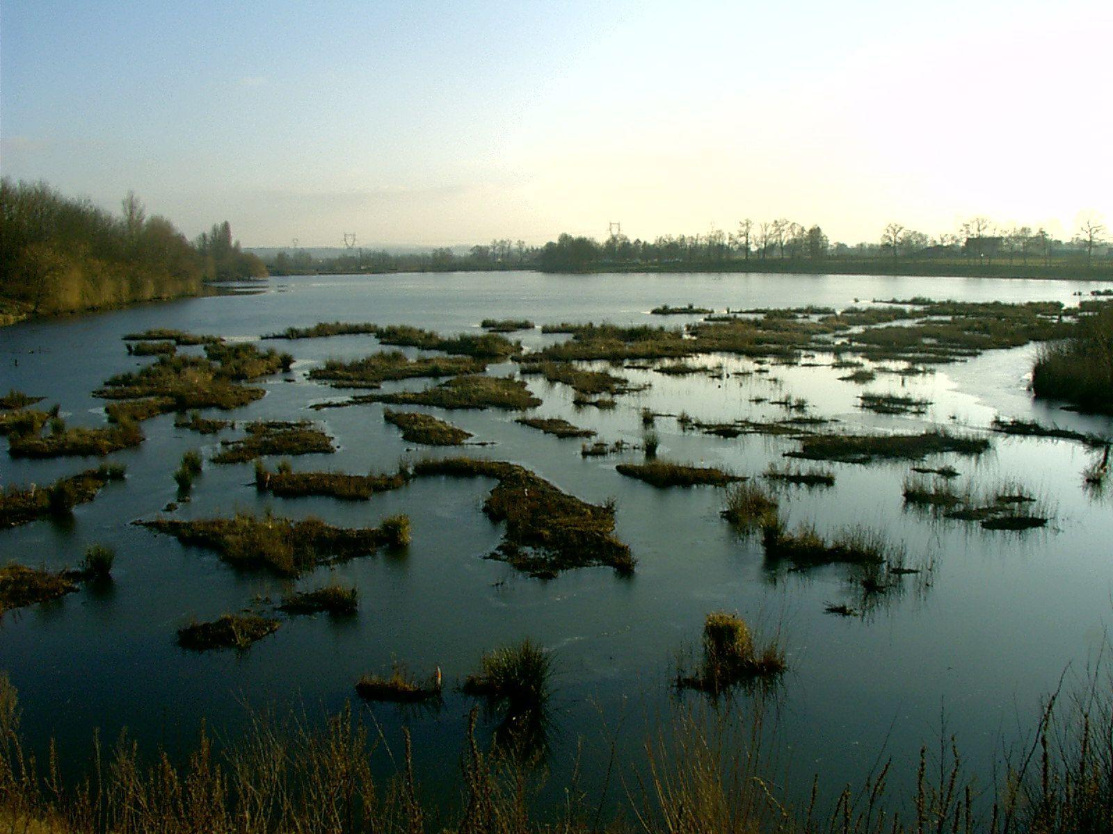 étang de cornillon - Rhone-Alpes - (42) Td85x0vx